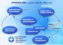 hsc business studies human resources case studies